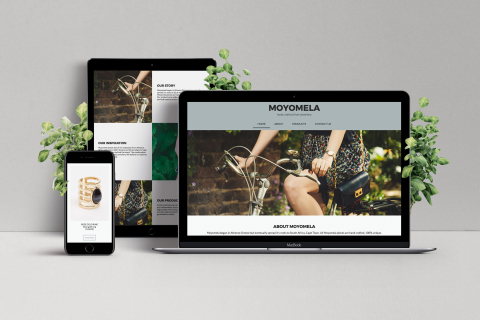 Dimi-Moyo-Web-Mock-Up
